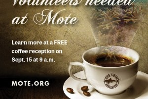 Volunteer Interest Coffee