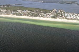 Bill filed to support Florida Red Tide Mitigation & Technology Development Initiative led by Mote
