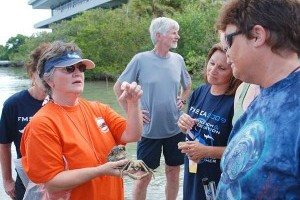 FMSEA/FWC Aquatic Species Collection Workshop