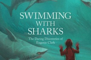 Virtual Storytime: Swimming with Sharks
