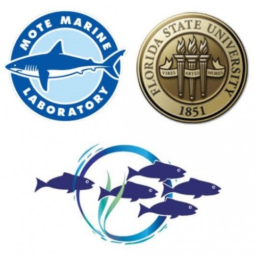 2019 FISHERIES SYMPOSIUM